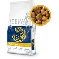 Trockenfutter ICEPAW Reset pure 23/11