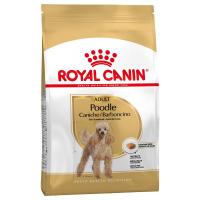 Trockenfutter Royal Canin Poodle Adult